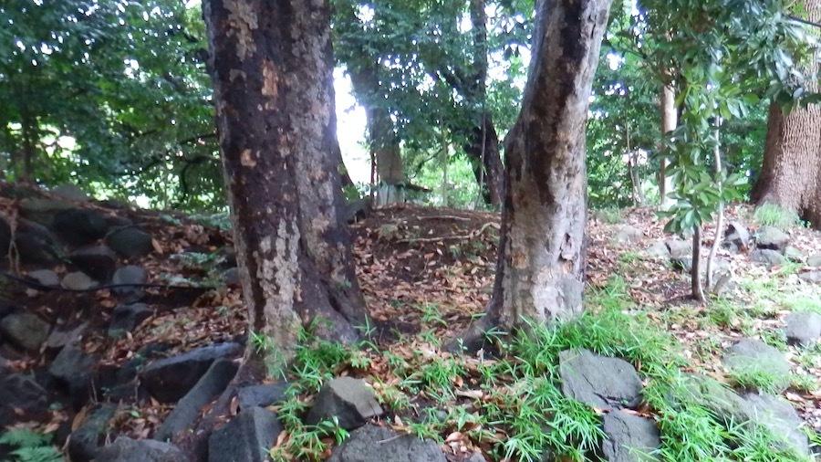 「日枝神社の前方後円墳」11