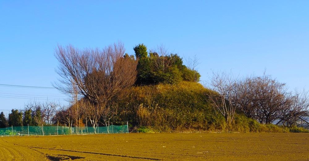 池辺富士1