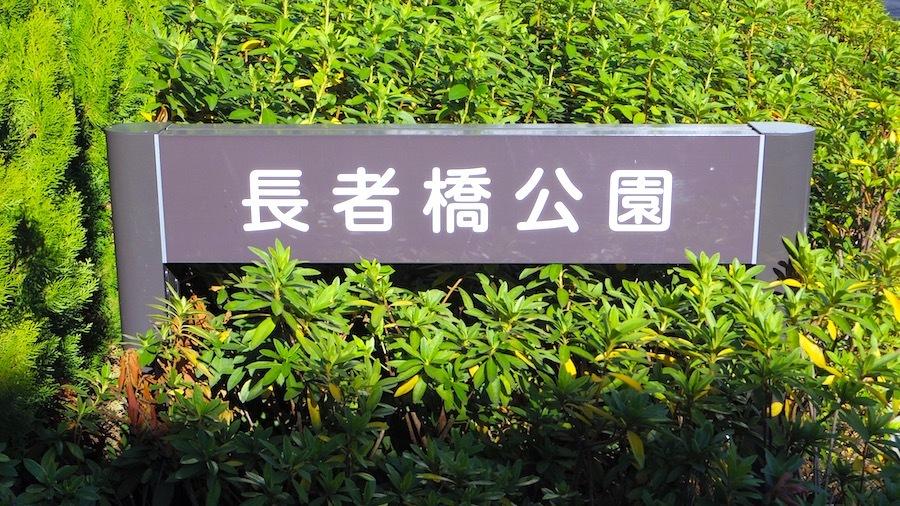中野区「鈴木九郎長者塚」22