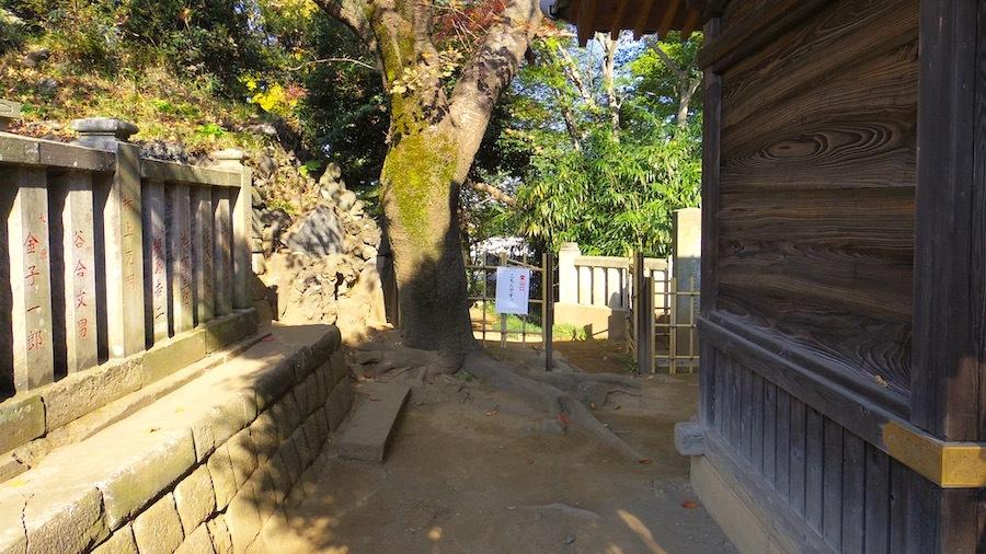 志木市「田子山富士塚」2-6