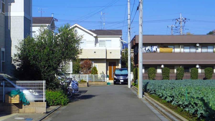 50 石塚古墳(推定地2)