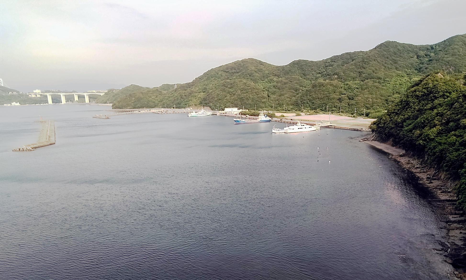 観潮船とクルーズ船