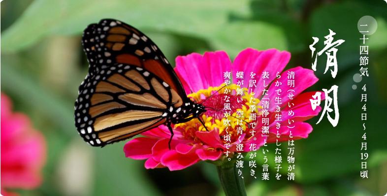 bnr_seimei.jpg