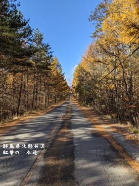 20201104群馬県北軽井沢、紅葉の一本道3
