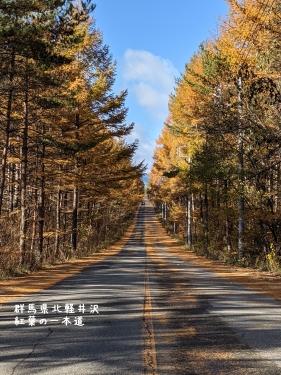 20201104群馬県北軽井沢、紅葉の一本道4