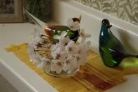家でお花見1