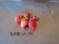 5・22イチゴ