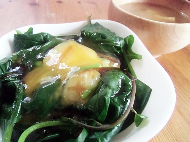 ツルムラサキの朝食