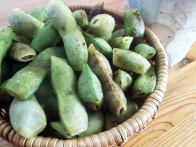 大粒の枝豆