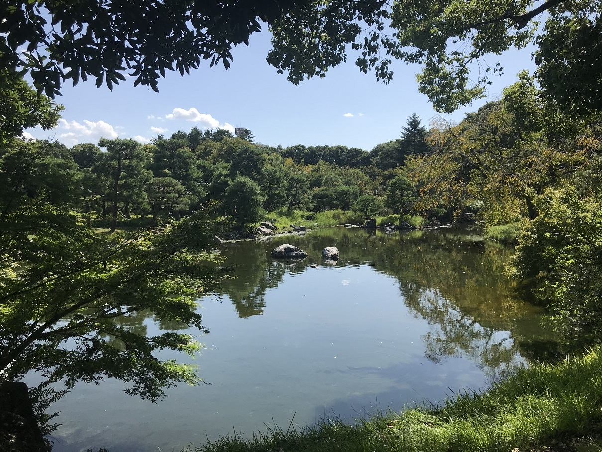 白鳥庭園6