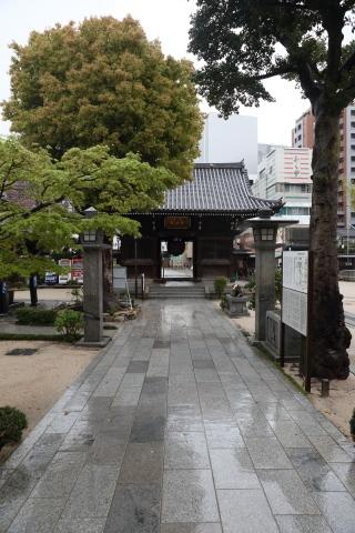 20200327matsubayashi.jpg