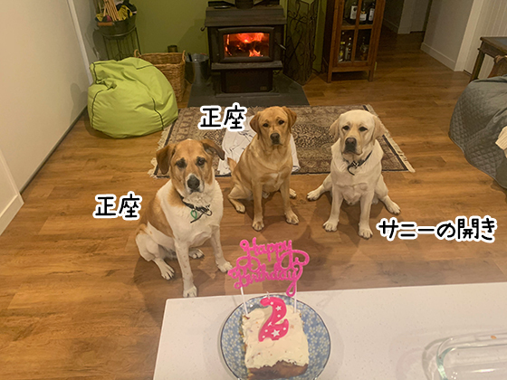 01122020_dogpic4.jpg