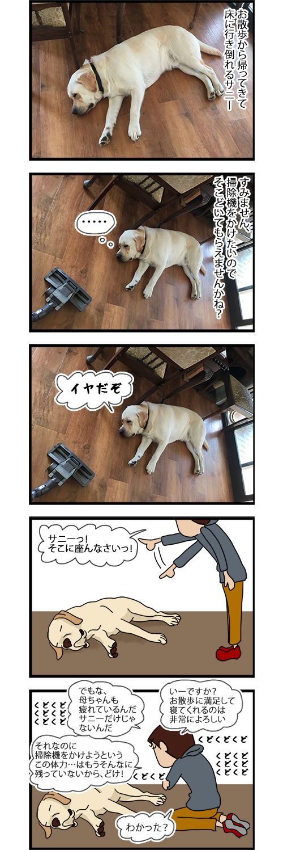 03082020_dogcomic1.jpg