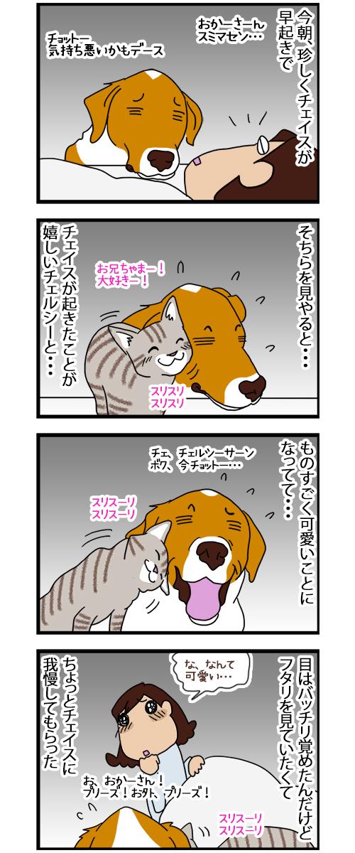 05082020_dogcomic.jpg