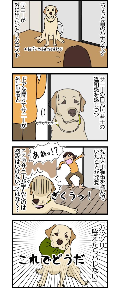 05112020_dogcomic_1.jpg