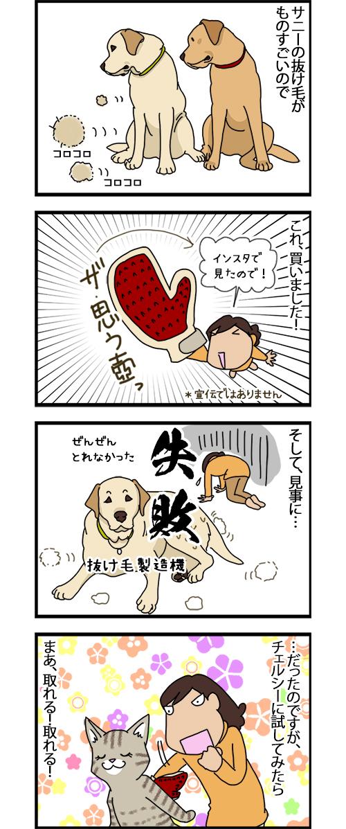 06112020_dogcomic_1.jpg