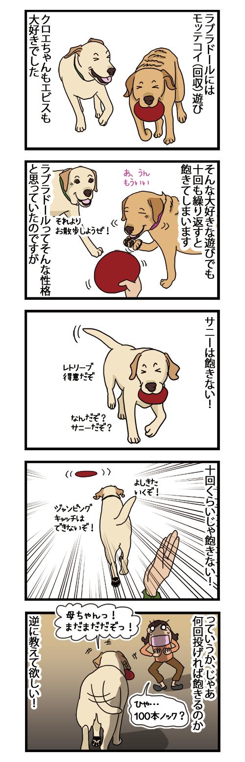 07122020_dogcomic.jpg