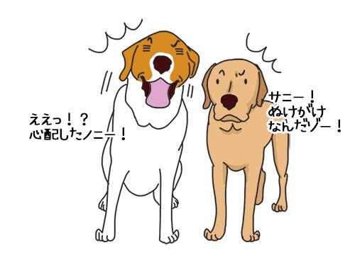 09062020_dog2.jpg
