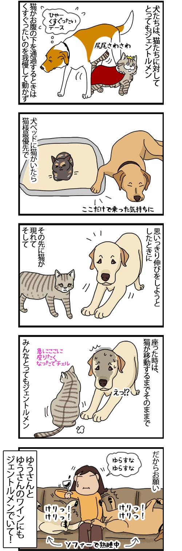 09102020_dogcomic.jpg