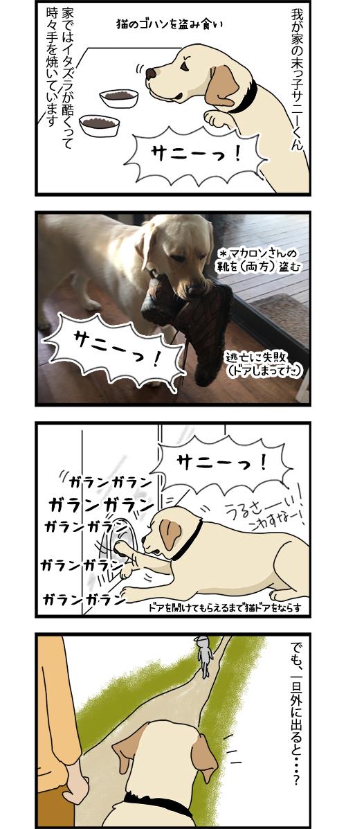 10072020_dogcomic1.jpg