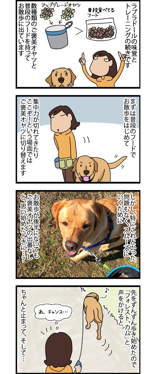 10092020_dogcomic_1.jpg