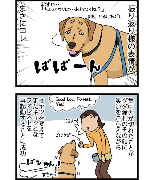 10092020_dogcomic_2.jpg