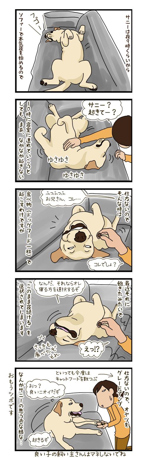 11052020_dogcomic.jpg