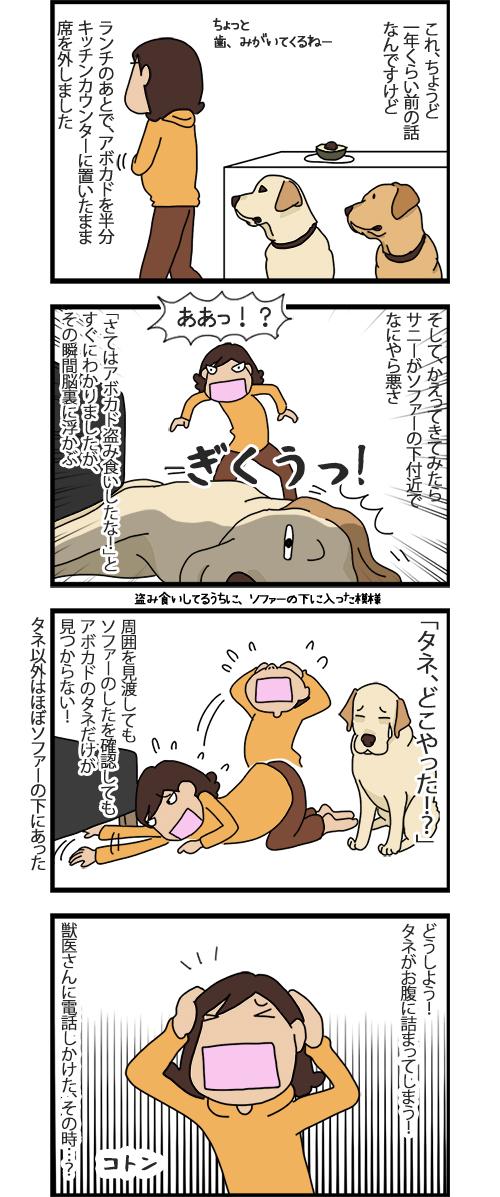 12102020_dogcomic_1.jpg