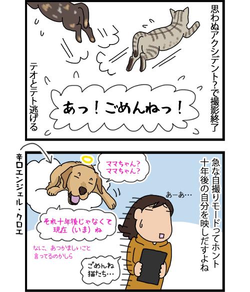 13072020_dogcomic_2.jpg