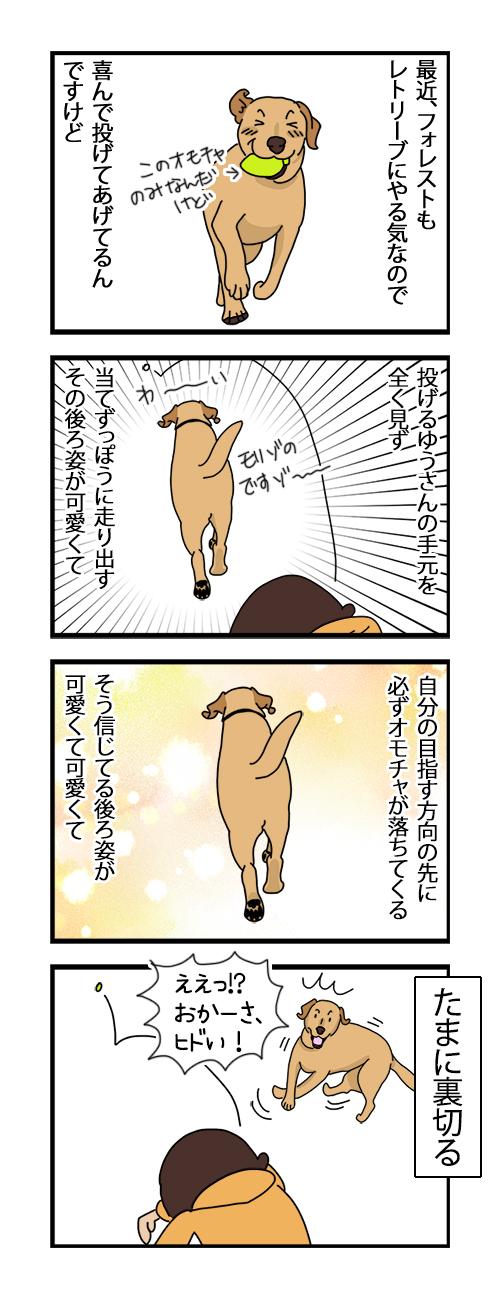 13112020_dogcomic.jpg