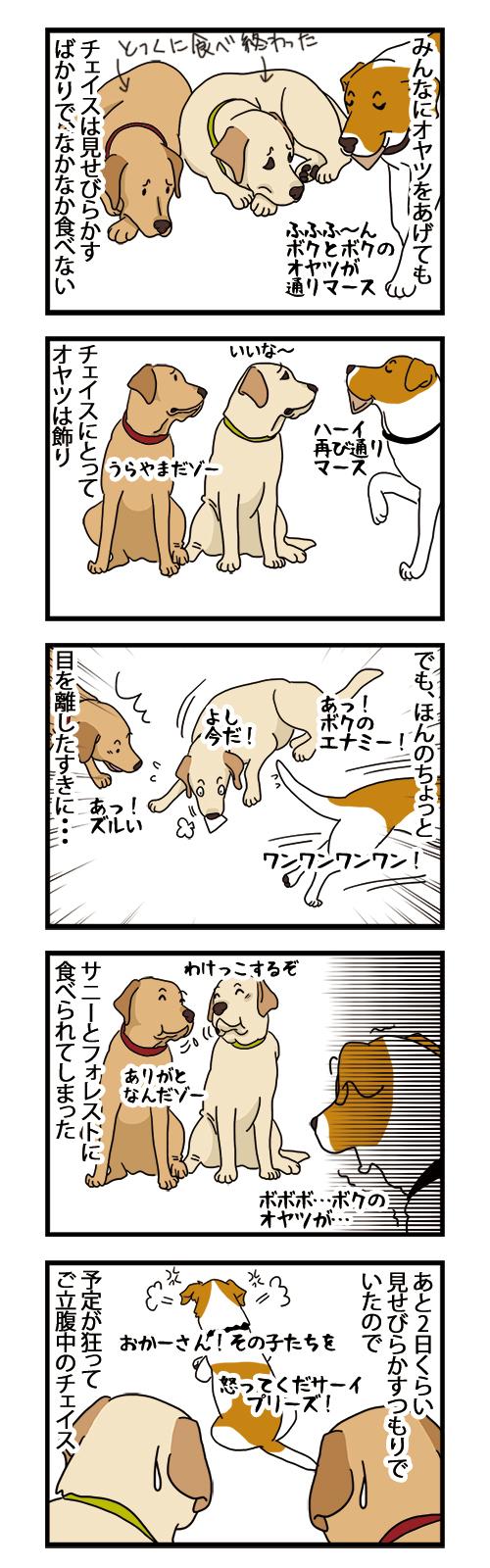 13122020_dogcomic.jpg