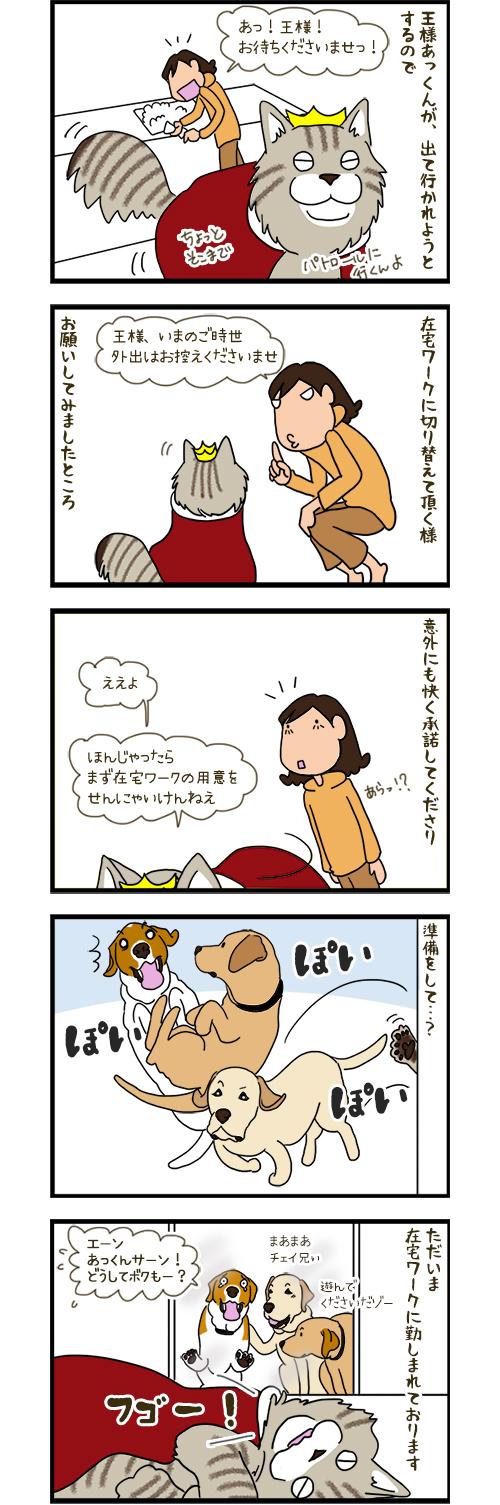 14042020_dogcomic.jpg