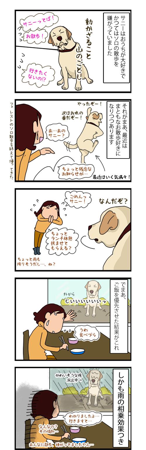 14052020_dogcomic.jpg