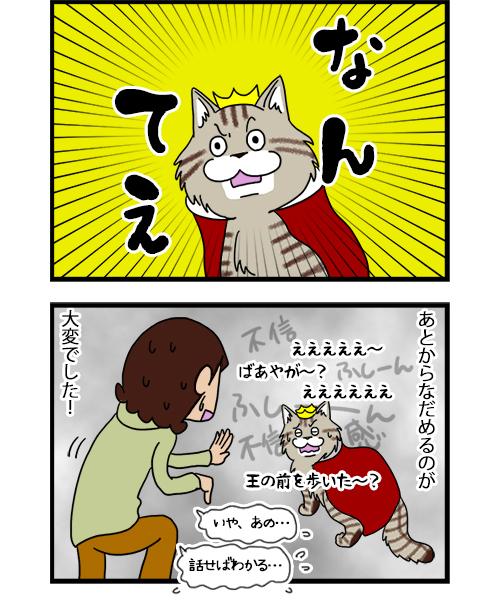 14082020_dogcomic_2.jpg