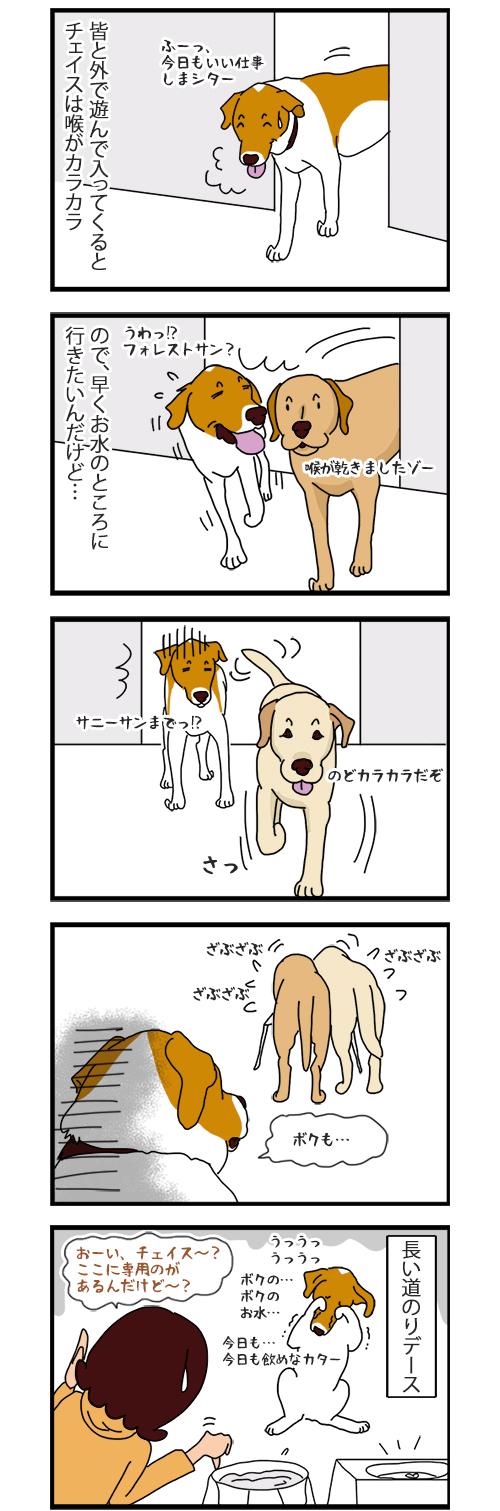 15052020_dogcomic.jpg