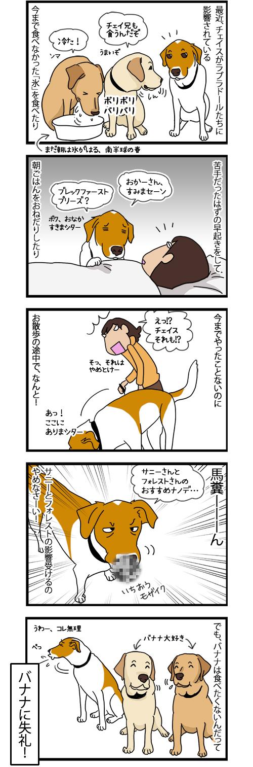 15092020_dogcomic.jpg