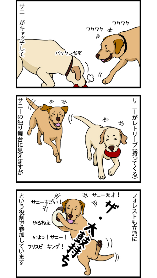 17082020_dogcomic_2.jpg