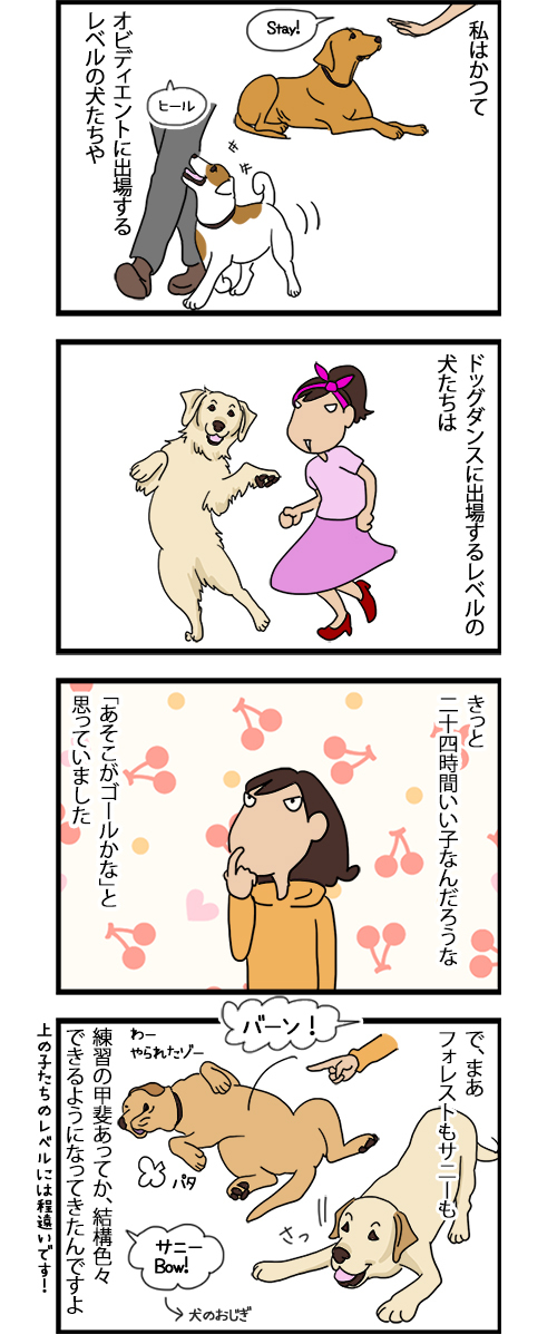 17092020_dogcomic_1.jpg