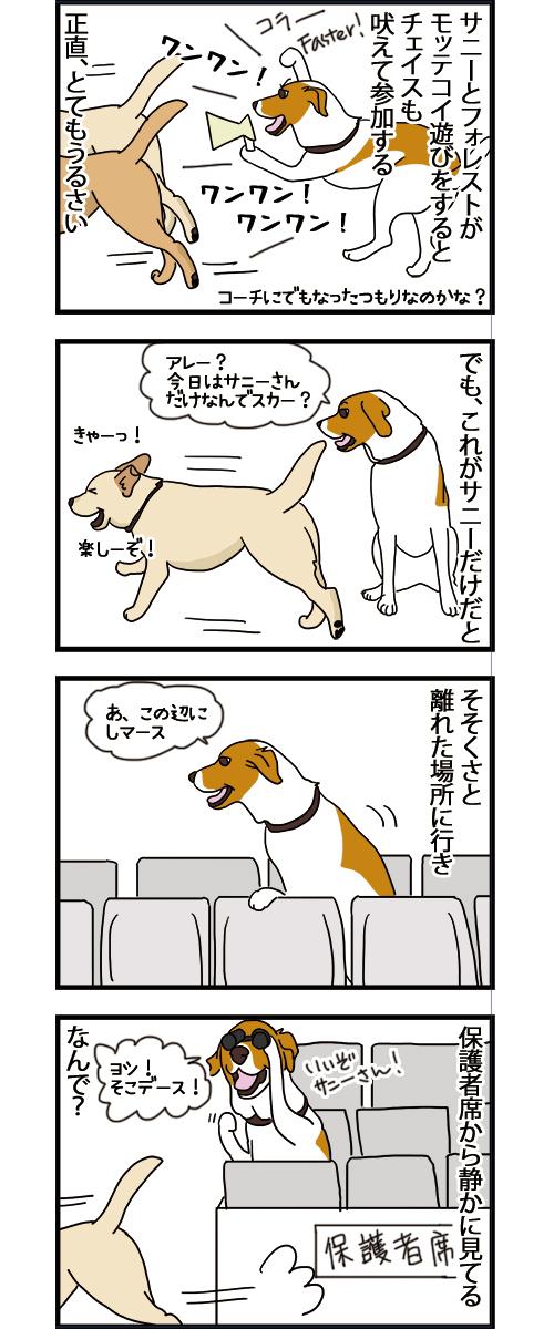 17112020_dogcomic.jpg