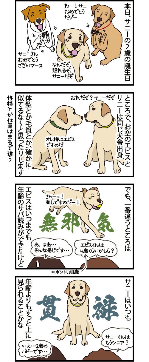17122020_dogcomic.jpg