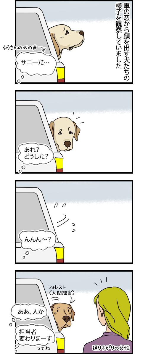 18072020_dogcomic1.jpg