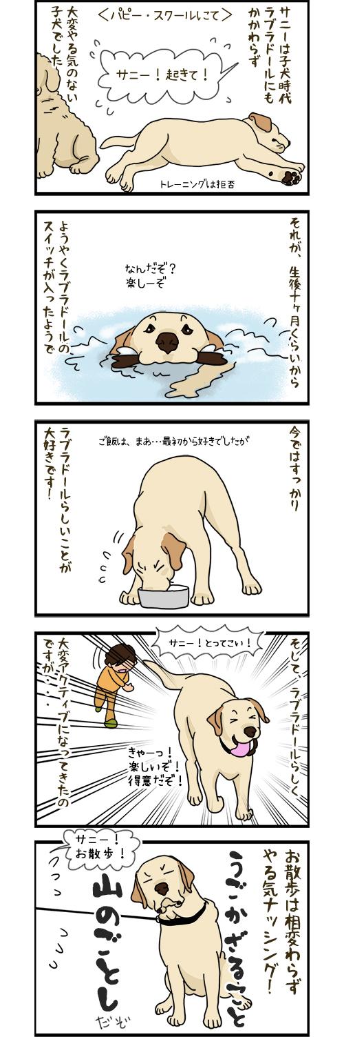 19032020_dogcomic.jpg