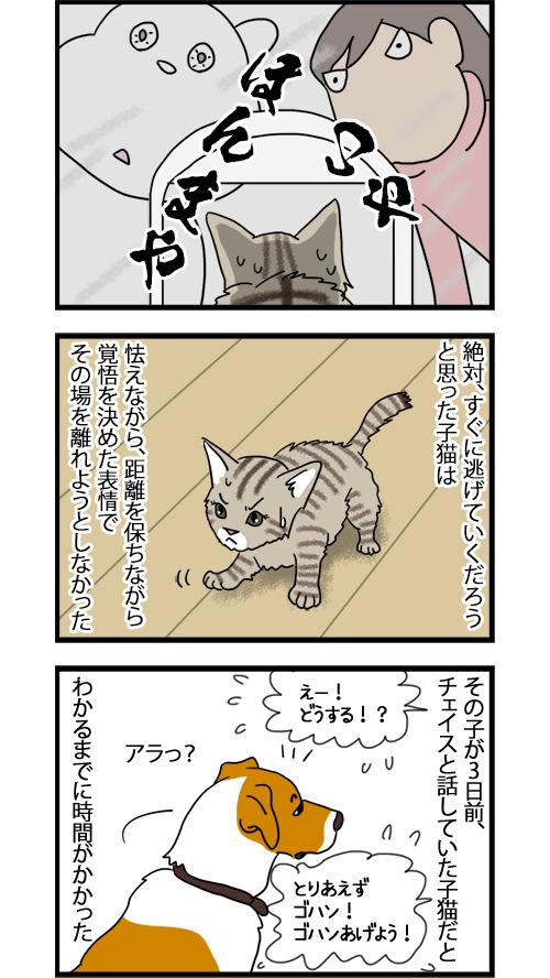 19082020_dogcomic_2.jpg