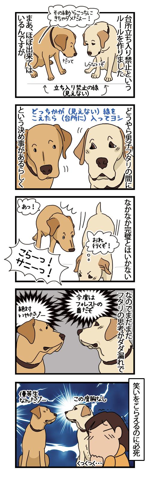 19112020_dogcomic.jpg