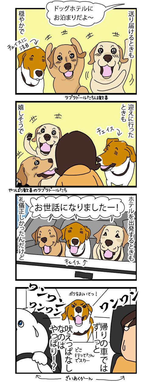 20062020_dogcomic.jpg