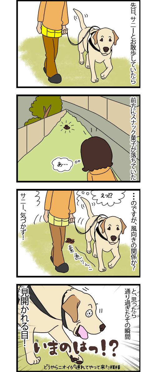20102020_dogcomic1.jpg