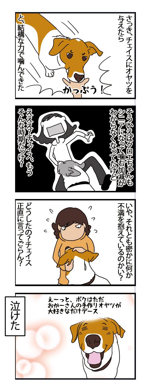 20112020_dogcomic.jpg
