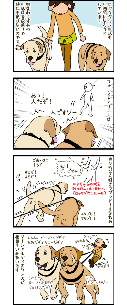 21042020_dogcomic.jpg