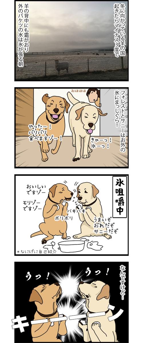 21052020_dogcomic1.jpg