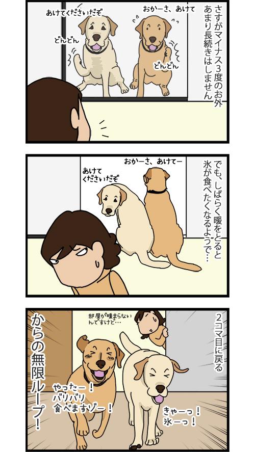21052020_dogcomic2.jpg